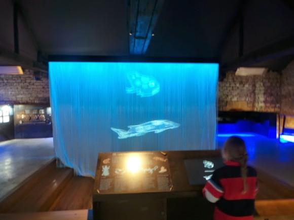 interactief-vis-trotse-moeders-1