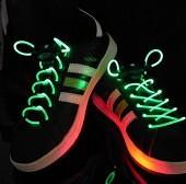 schoenveters